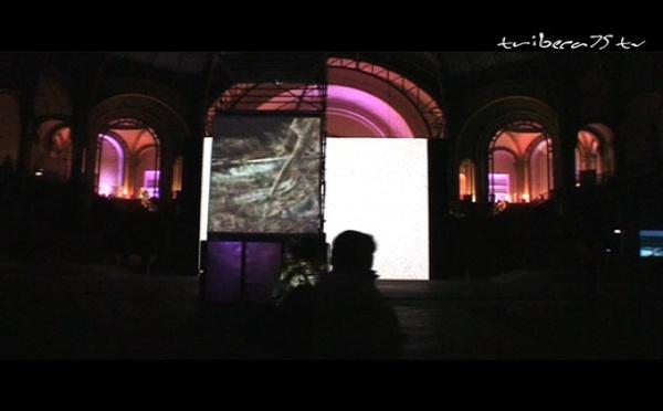 """""""Dans la nuit des images"""" au Grand Palais"""