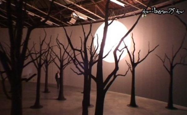 'Cellar Door' : Loris Gréaud investit le Palais de Tokyo